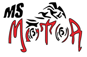 MSMOTOR old logo